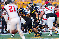 Baltimore, MD - SEPT 10, 2016: Towson Tigers quarterback Ellis Knudson (8) breaks free for a touchdown during game against Saint Francis at Johnny Unitas Stadium in Baltimore, MD. The Tigers defeated St. Francis 35-28. (Photo by Phil Peters/Media Images International)