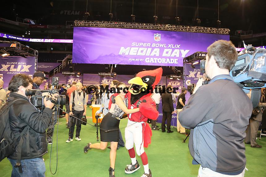 Maskottchen der Arizona Cardinals Big Red sorgt für Stimmung - Super Bowl XLIX Media Day, US Airways Center, Phoenix