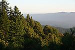 Panorama Ridge near Castle Rock State Park
