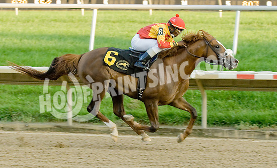 Rich Frynchman winning The Bob Magness Memorial Derby (Gr2) at Delaware Park on 9/10/11.