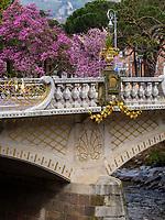 Kirschbl&uuml;te, Postbr&uuml;cke in Meran-Merano, Bozen &ndash; S&uuml;dtirol, Italien<br /> Cherry blossom and post bridge, Meran-Merano, province Bozen-South Tyrol, Italy