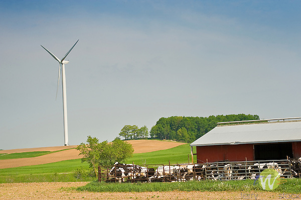 Barn and wind turbines Missaukee County, MI..