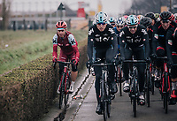 Tony Martin (GER/Katusha-Alpecin) shaving some bush while manoeuvring himself towards the front of the closed pack<br /> <br /> 102nd Ronde van Vlaanderen 2018 (1.UWT)<br /> Antwerpen - Oudenaarde (BEL): 265km