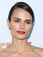 SANTA MONICA, CA, USA - JUNE 11: Jordana Brewster at the Pathway To The Cures For Breast Cancer: A Fundraiser Benefiting Susan G. Komen held at the Barker Hangar on June 11, 2014 in Santa Monica, California, United States. (Photo by Xavier Collin/Celebrity Monitor)