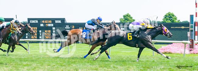 Vianney Lane winning at Delaware Park on 7/20/15