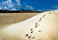 Spanien, Kanarische Inseln, Fuerteventura, Corralejo: Duenen, Fußspuren im Strand   Spain, Canary Island, Fuerteventura, Corralejo: dunes and footprints