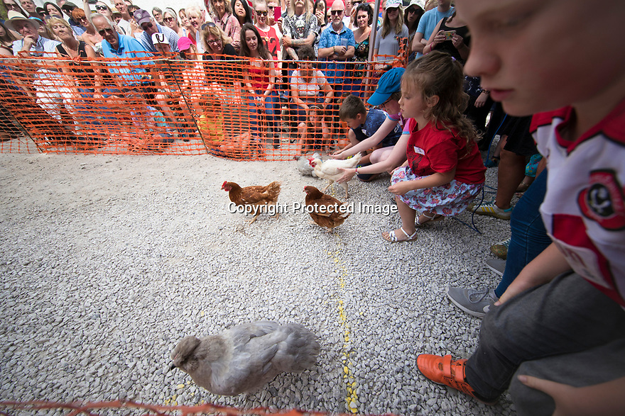 05/08/18<br /> <br /> Competitors race their hens at the Hen Racing World Championship  outside the Barley Mow pub in Bonsall near Matlock Bath, in the Derbyshire Peak District.<br /> <br /> All Rights Reserved, F Stop Press Ltd. (0)1335 344240 +44 (0)7765 242650  www.fstoppress.com rod@fstoppress.com