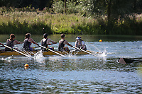 Race: 44: Mx 8+  Heat 2<br /> <br /> Peterborough Summer Regatta 2017 - Sunday<br /> <br /> To purchase this photo, or to see pricing information for Prints and Downloads, click the blue 'Add to Cart' button at the top-right of the page.