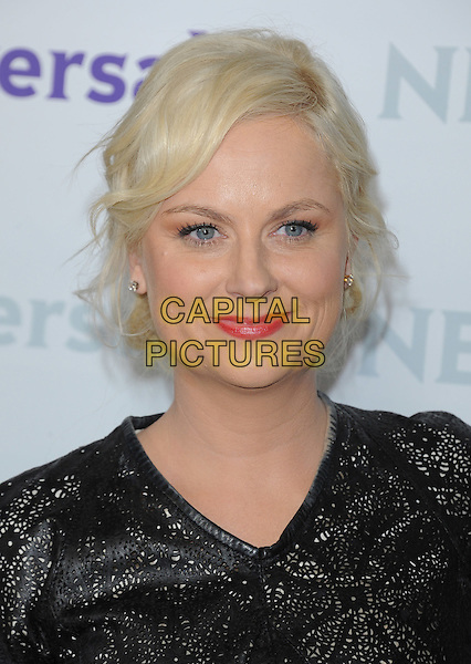 Amy Poehler .at The NBC Universal Press Tour All-Star Party, The Athenaeum, Pasadena, California, USA, January 6th 2012..portrait headshot black red lipstick .CAP/RKE/DVS.©DVS/RockinExposures/Capital Pictures.