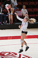 STANFORD, CA - October 14, 2016: Halland McKenna at Maples Pavilion. The Arizona Wildcats defeated the Cardinal 3-1.