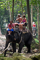 Thailand, Southern Thailand, Province Surat Thani, Ko Samui island: Tourists elephant trekking in middle of island | Thailand, Suedthailand, Provinz Surat Thani, Insel Ko Samui: Elefantenritt fuer Touristen im Inselinnern