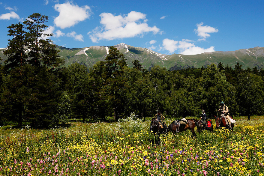 Russia, Caucasus, Teberdinsky Biosphere reserve, riding through flower meadows in the Arkhyz valley in the western part of the reserve.<br /> Model release form 2,3 and 4