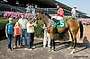 Tippie Tap winning at Delaware Park on 8/27/14