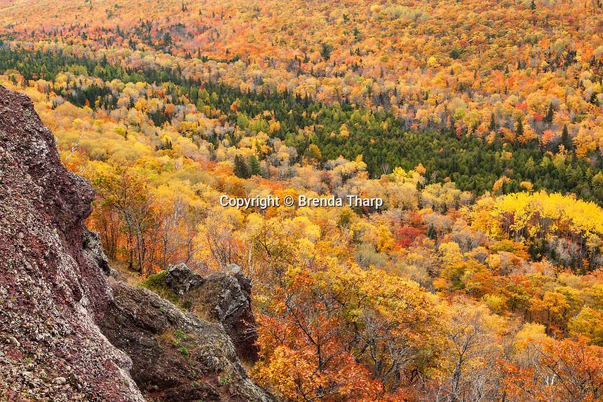 Fall foliage viewed from Brockway Summit, Keewenaw Peninsula, upper Michigan.
