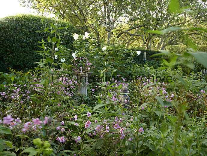 A pink flower border in the back garden with a metal sculpture displayed on a stone plinth and a sculpture hidden amongst the foliage.