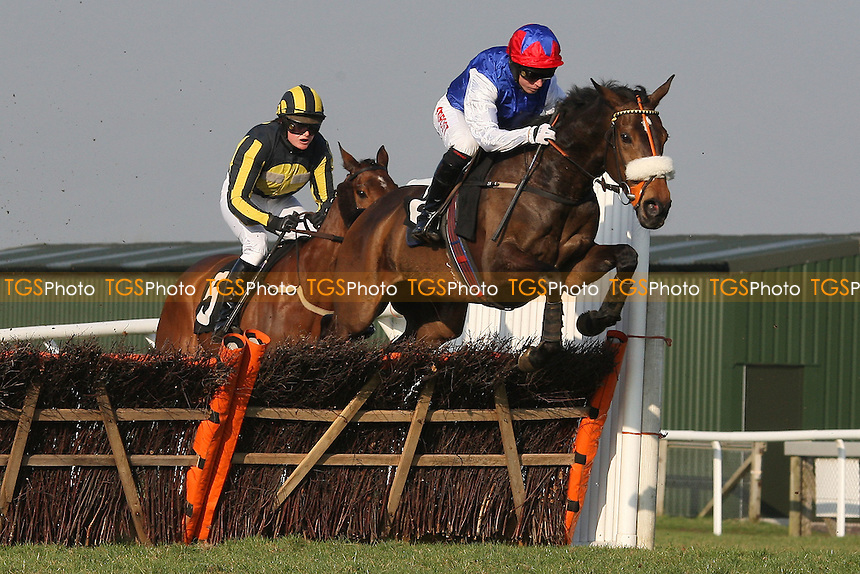 Race winner Flite ridden by Noel Fehily leads the field in the Follow Plumpton Racecourse On Facebook Mares Handicap Hurdle - Horse Racing at Plumpton Racecourse, East Sussex - 12/03/12 - MANDATORY CREDIT: Gavin Ellis/TGSPHOTO - Self billing applies where appropriate - 0845 094 6026 - contact@tgsphoto.co.uk - NO UNPAID USE.