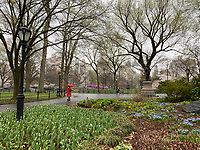 New York, New York City. A woman takes a safe walk in Central Park.