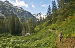 Hiking, Hiker, Little Beaver trail, Mount Whatcom, Pickett Range, North Cascades National Park, wilderness, Cascade Mountains, Washington State, Pacific Northwest, United States, Scott McCredie, released,.