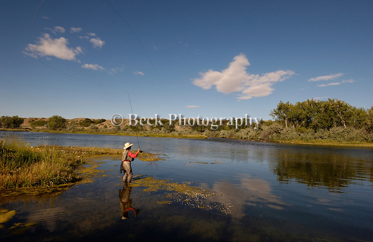 Fly fishing on the Bighorn River, Montana
