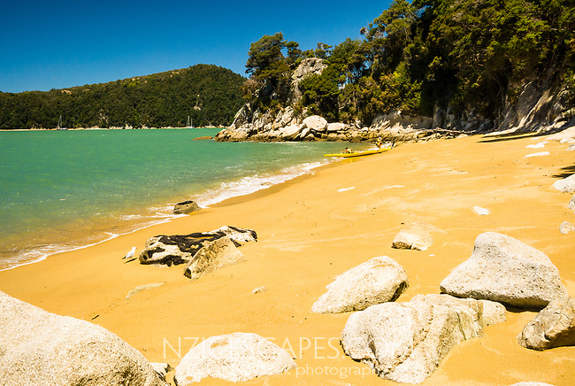 Kayakers on beautiful, golden beach on Abel Tasman Coastal Track, Abel Tasman National Park, Nelson Region, New Zealand, NZ