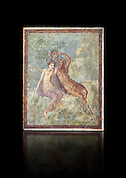 Roman Nero Period fresco wall painting of Perseus and Andromeda, from a house in the Insula Occidentalis at Pompeii , inv 9058 , Naples National Archaeological Museum , black background