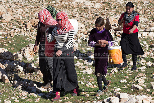11/12/2014. Sinjar Mountains, Iraq. Yazidi refugees, stranded after being surrounded by Islamic State insurgents, are seen on Mount Sinjar.<br /> <br /> Although a well publicised exodus of Yazidi refugees took place from Mount Sinjar in August 2014 many still remain on top of the 75 km long ridge-line, with estimates varying from 2000-8000 people, after a corridor kept open by Syrian-Kurdish YPG fighters collapsed during an Islamic State offensive. The mountain is now surrounded on all sides with winter closing in, the only chance of escape or supply being by Iraqi Air Force helicopters.