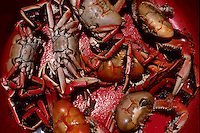 Brazilian cuisine, Crabs for sale in open-air market. Belem city, Para State, Brazil.
