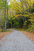 Autumn foliage along Tunnel Brook Road in Benton, New Hampshire during the autumn months.