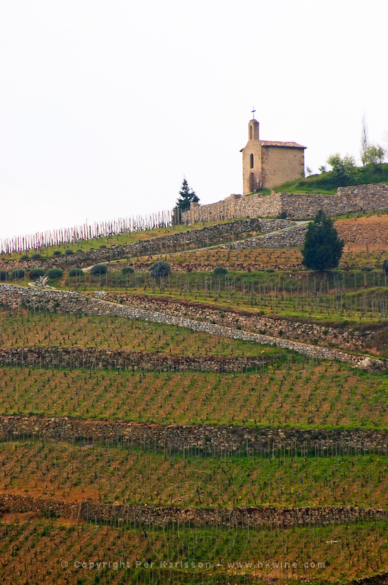 The chapel on top of the hill the Chapelle vineyard. The Hermitage vineyards on the hill behind the city Tain-l'Hermitage, on the steep sloping hill, stone terraced. Sometimes spelled Ermitage. Tain l'Hermitage, Drome, Drôme, France, Europe