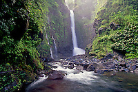 A remote waterfall in Hana, Maui.