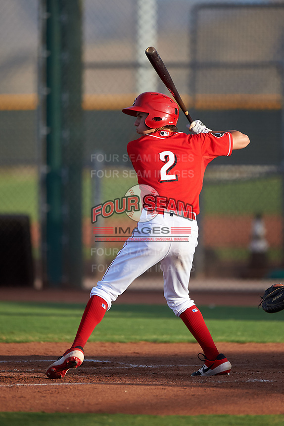 AZL Reds Rafael Franco (2) at bat during an Arizona League game against the AZL Athletics Green on July 21, 2019 at the Cincinnati Reds Spring Training Complex in Goodyear, Arizona. The AZL Reds defeated the AZL Athletics Green 8-6. (Zachary Lucy/Four Seam Images)