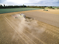 Combining wheat - Lincolnshire, September