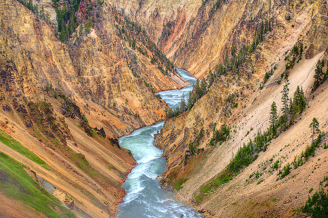 THE YELLOWSTONE RIVER WINDS ITS WAY THROUGH THE GRAND CANYON OF THE YELLOWSTONE IN YELLOWSTONE NATIONAL PARK,WYOMING