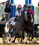 JUNE 08: Tacitus and Jose Ortiz bump into War of Will and Tyler Gaffalione at the start of The Belmont Stakes at Belmont Park in Elmont, New York on June 08, 2019. Evers/Eclipse Sportswire/CSM