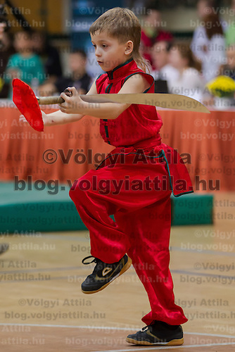 Mikhail Kuznetcov performs his routine during the 3rd International Chan Wu, Traditional Kung Fu and Wu Shu Championships in Budapest, Hungary on November 24, 2012. ATTILA VOLGYI