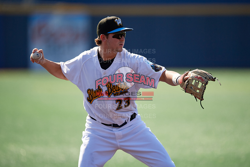 West Virginia Black Bears third baseman Jared Triolo (23) throws to first base during a NY-Penn League game against the Batavia Muckdogs on August 29, 2019 at Monongalia County Ballpark in Morgantown, New York.  West Virginia defeated Batavia 5-4 in ten innings.  (Mike Janes/Four Seam Images)