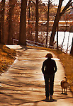 A woman and a dog walk in the woods.