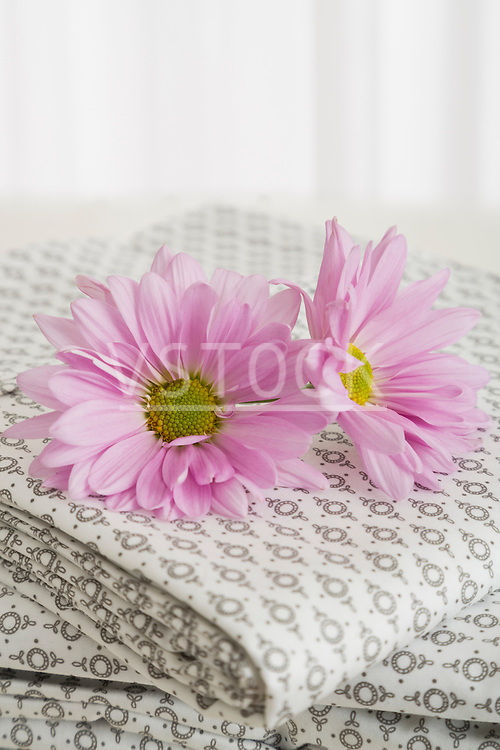 Pink flower heads on stack of patterned bedding