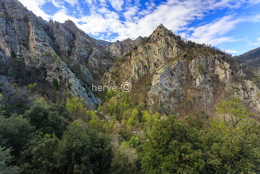 France, Pyrénées-Orientales (66), Casteil, la rivière El Cadi au fond des gorges a proximité de l'abbaye Saint-Martin du Canigou // France, Pyrenees Orientales, Casteil, mountain