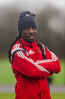 SWANSEA, WALES - JANUARY 28: Marvin Emnes of Swansea City popes for the camera prior to training  on January 28, 2015 in Swansea, Wales.