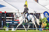 NZL-Jeffrey Amon rides My Silver Lining during the CIC2* Eventing Dressage. 2018 NZL-Horse of the Year Show. Hastings. Friday 16 March. Copyright Photo: Libby Law Photography