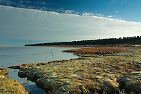 Tentsmuir Nature Reserve and the River Tay from Tayport, Fife