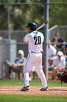 Dartmouth Big Green right fielder Hayden Rappoport (20) at bat during a game against the Villanova Wildcats on March 3, 2018 at North Charlotte Regional Park in Port Charlotte, Florida.  Dartmouth defeated Villanova 12-7.  (Mike Janes/Four Seam Images)