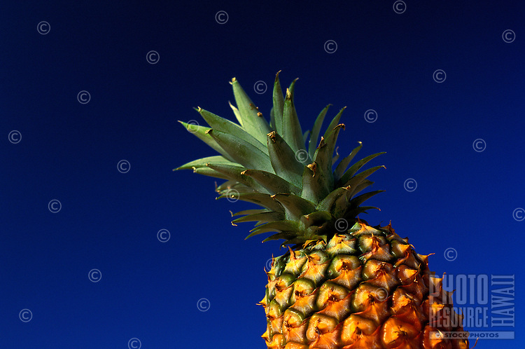 Shot of a pineapple with nothing but the sky in the background