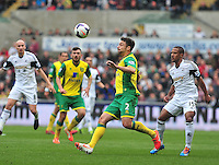 Swansea v Norwich, Liberty Stadium, Saturday 29th march 2014...<br /> <br /> <br /> <br /> Norwich's Russell Martin