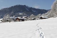 Deutschland, Bayern, Chiemgau, Ruhpolding: Austragungsort fuer den jaehrlichen Biathlon-Weltcup; Winterzauber im Bayerischen Voralpenland | Germany, Bavaria, Chiemgau, Ruhpolding: venue of the yearly Biathlon World Cup, winter scenery at Bavarian Alpine Upland