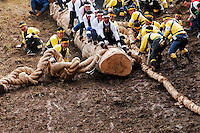Kiotoshi, the thrillingly dangerous log drop, during the Onbashira festival, where 16 sacred pillars are brought by hand to rejuvenate each the upper and lower Suwa Shrines in Nagano Prefecture.