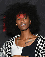 "10 January 2020 - Beverly Hills, California - Ari Fitz. Netflix's ""AJ And The Queen"" Season 1 Premiere at The Egyptian Theatre in Hollywood. Photo Credit: Billy Bennight/AdMedia"