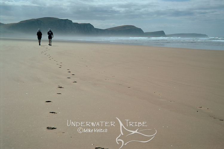 Trekkers on a beach in New Zealand, Catlins, South Island, New Zealand, Pacific Ocean