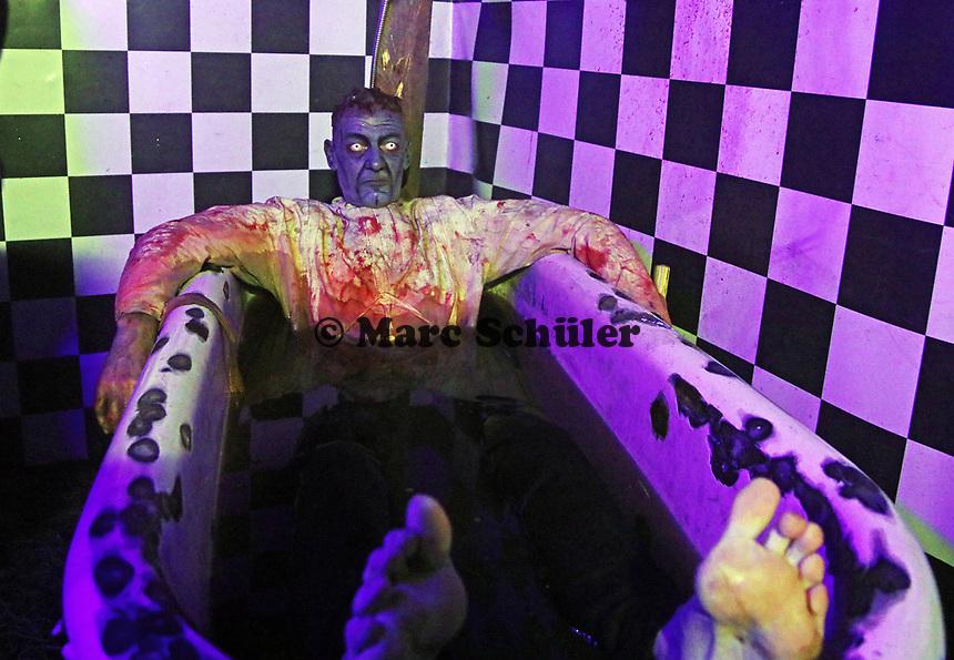 Darsteller als Frankenstein in der Badewanne - Mühltal 03.11.2018: Halloween auf der Burg Frankenstein